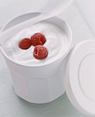 Yogurt with Fresh Raspberries
