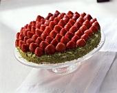 Whole strawberry gateau with lime cream & pistachio edge