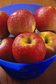 Red apples (Boskop variety) in a bowl