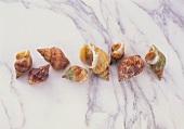 Whelks on a marble slab