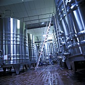 Steel Wine Storage Tanks