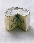 Bresse bleu (a blue cheese), cut into