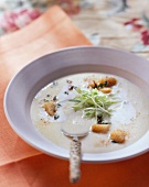 Veloute potato soup with herb croutons and onions tops