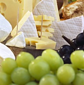 French bio-cheese with grapes