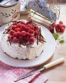 Raspberry ice cream cake with cream
