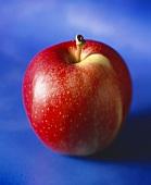 Roter Apfel vor blauem Hintergrund