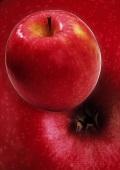 Cortland Apples Close Up