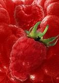 Artistically arranged still life with raspberries