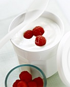 Natural yoghurt with fresh raspberries