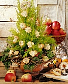 Adventsbäumchen mit Plätzchen als Baumanhänger