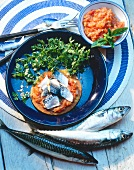Tartlet with mackerel and tomato puree