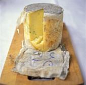 Hard English cheese