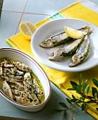 Marinated sardines and stuffed sardines