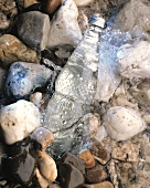 A bottle of mineral water being chilled in a stream