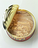 Tuna in an opened can