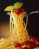 Spaghetti with tomato sauce and basil on fork