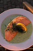 Grilled salmon on dill sauce