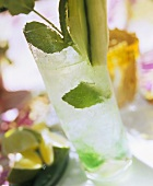 Springtime, garnished with cucumber strips & mint leaves