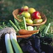 Various vegetables, basket of stone-fruit behind