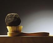 Black truffle on a truffle brush
