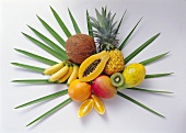 Still life with exotic fruit on palm leaf
