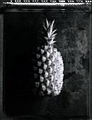 A pineapple (b/w photo)