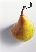 A yellow and red pear with stalk and small leaf