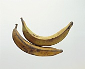 Two ripe plantains (cooking bananas)