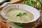 Creamed herb soup