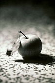 An apple with leaf (black & white photo)