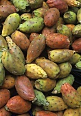 Lots of prickly pears (filling the picture)
