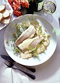 Steamed pike-perch on dill flowers