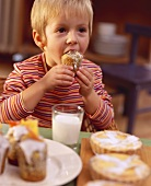 Boy at table with biscuits & milk biting into poppy seed muffin