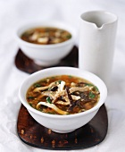 Chinese Hot and Sour Soup with Pork and Mushrooms