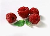 Four raspberries and a raspberry leaf