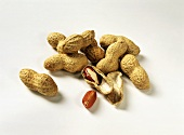 Peanuts with shell, one opened