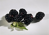 A few blackberries and blackberry leaves