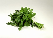 A bunch of mixed herbs (chervil, parsley, thyme)