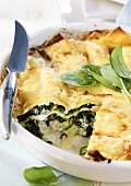 Spinach lasagna in the dish with knife