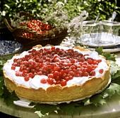 A redcurrant tart with meringue