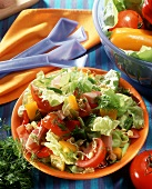 Salad leaves with peppers, tomatoes and ham