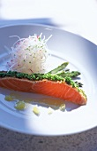 Salmon with Chives and Green Asparagus