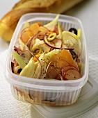 Fennel & onion salad with carrots & radishes in plastic box
