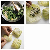 Making cabbage roulade with rice and spinach filling