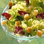 Mixed salad leaves with croutons and herb dressing