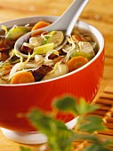 Chinese chicken and vegetable stew with glass noodles