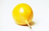 Yellow granadilla (passion fruit)