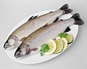 Two trout with slices of lemon and lime