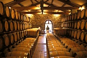 Wine Cellar; France