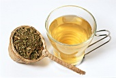 Clubmoss tea and dried herb (Huperzin selago)